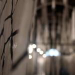 Gyotaku_enR-2014050
