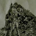 Gyotaku_enR-201421551bis5