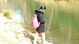 Ruma gravant sorolls al llac